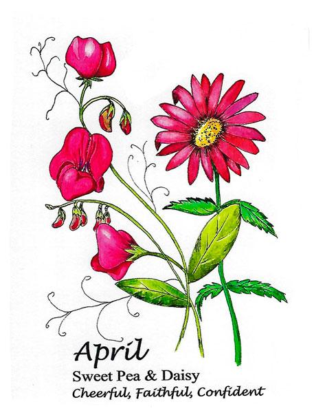 April Birthflower Card