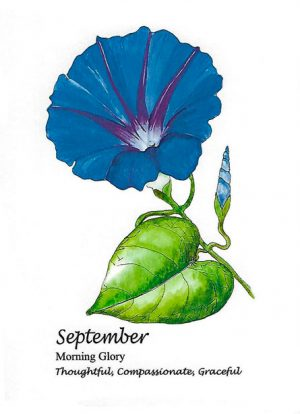 September Birthflower Card