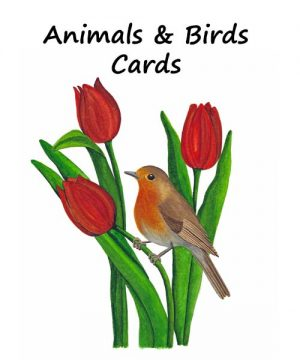 Animals & Birds Cards