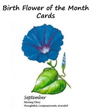 Birth Flower of the Month Cards