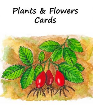 Plants & Flowers Greeting Cards